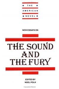 New Essays on The Sound and the Fury (The American Novel) epub